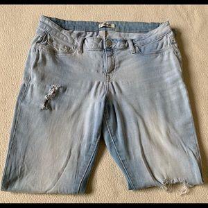 Charlotte Russe Jeans (Refuge)